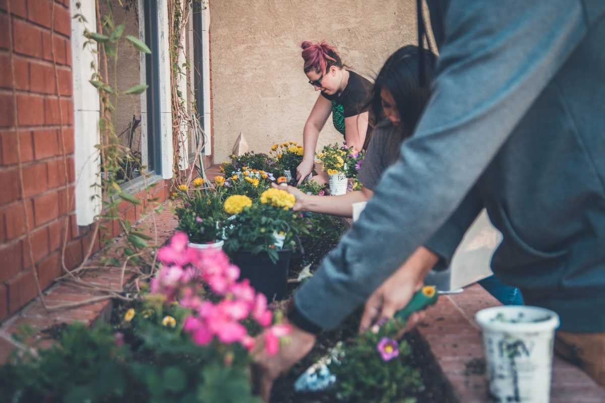 Study Shows Local Food Projects May Have a Positive Effect on Psychological Health