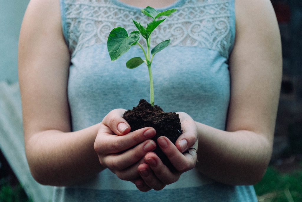 Composting and Sustainability